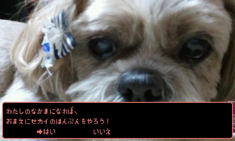 2011-06-01_02.09.47.jpg